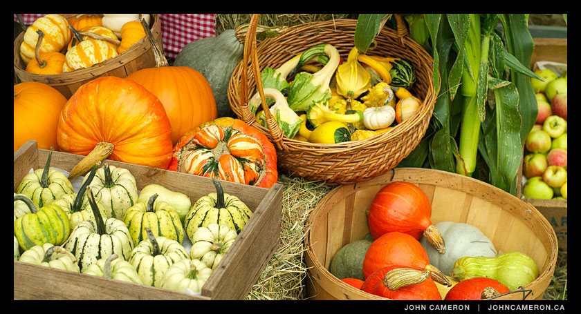 Ruckle Farm Produce at the Salt Spring Fall Fair