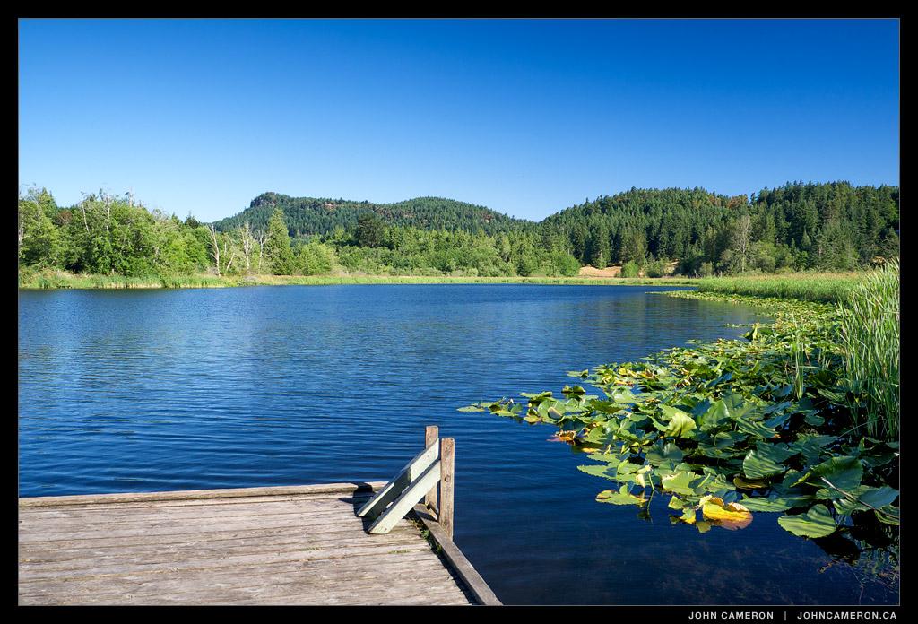 Blackburn Lake, a summer Morning