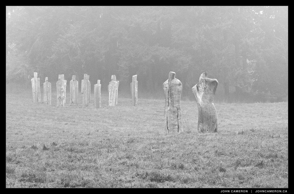 People in the Fog, Salt Spring