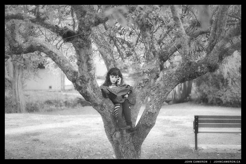 Girl in Tree in Park with Phone