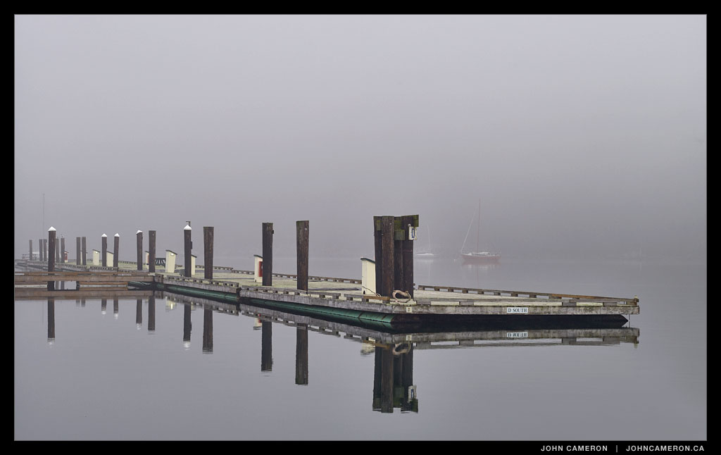Fog at the Marina