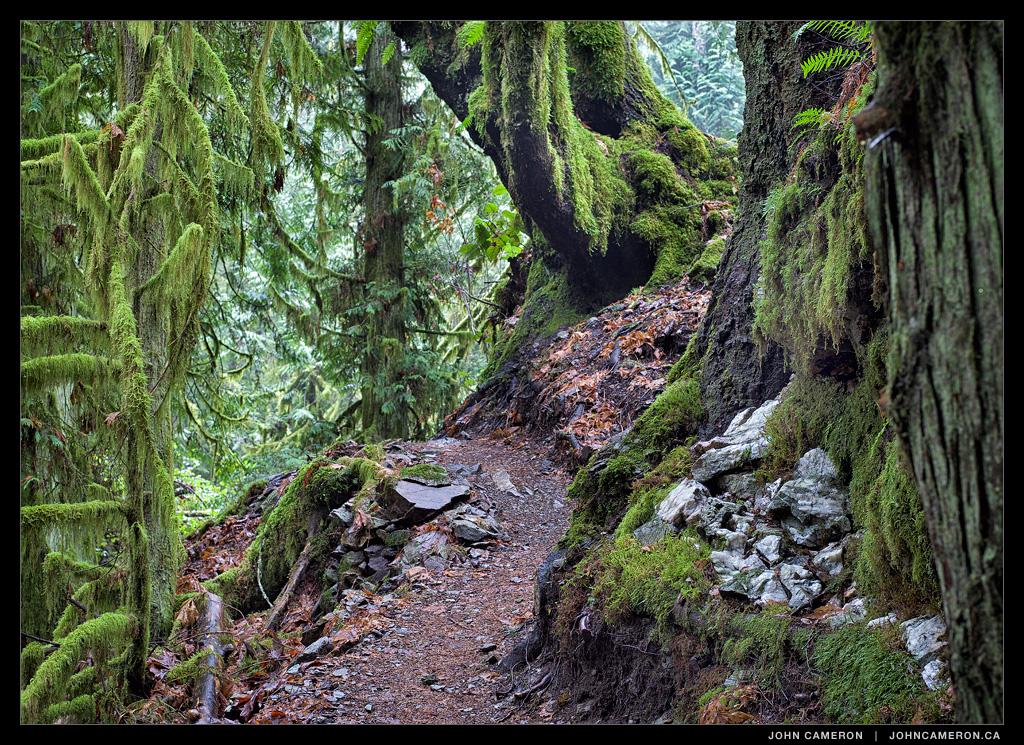 Hatfield Trail