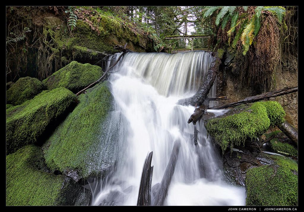 Salt Spring Stream