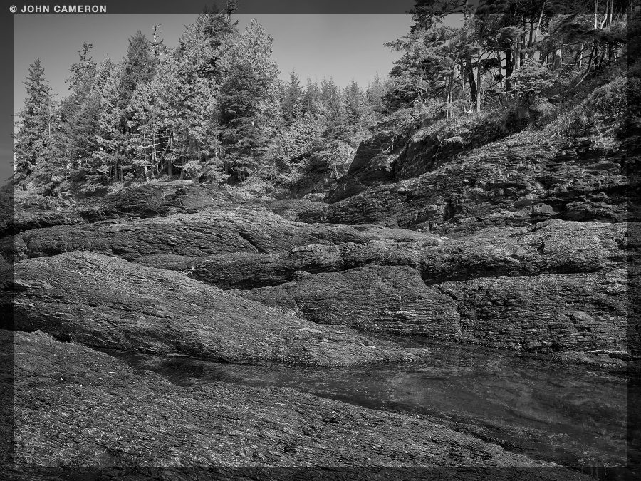 Shoreline in black and white