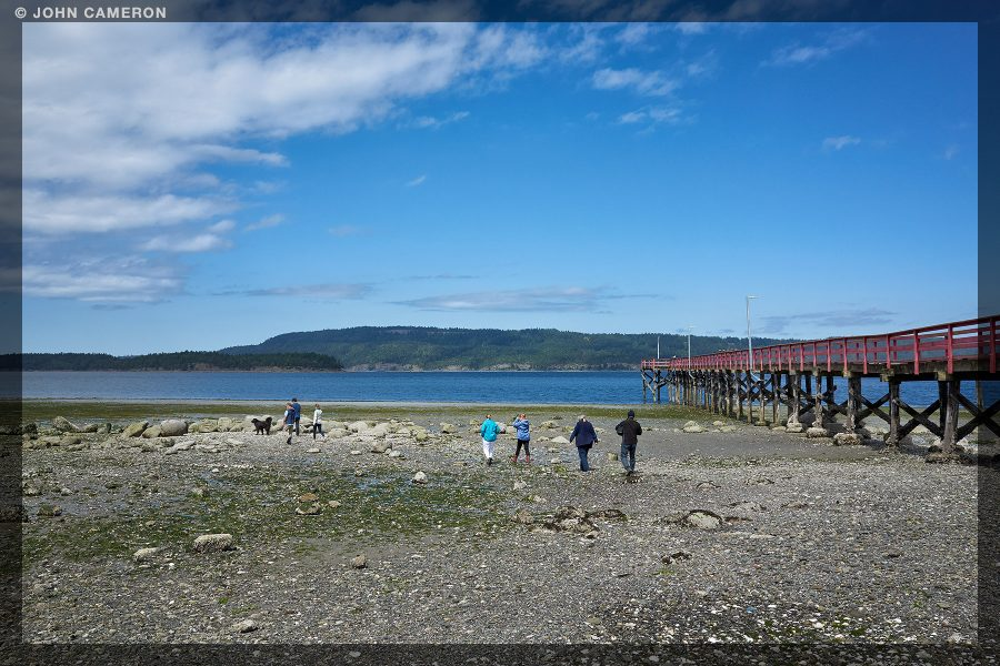 Low Tide Gathering at Fernwood on Salt Spring Island