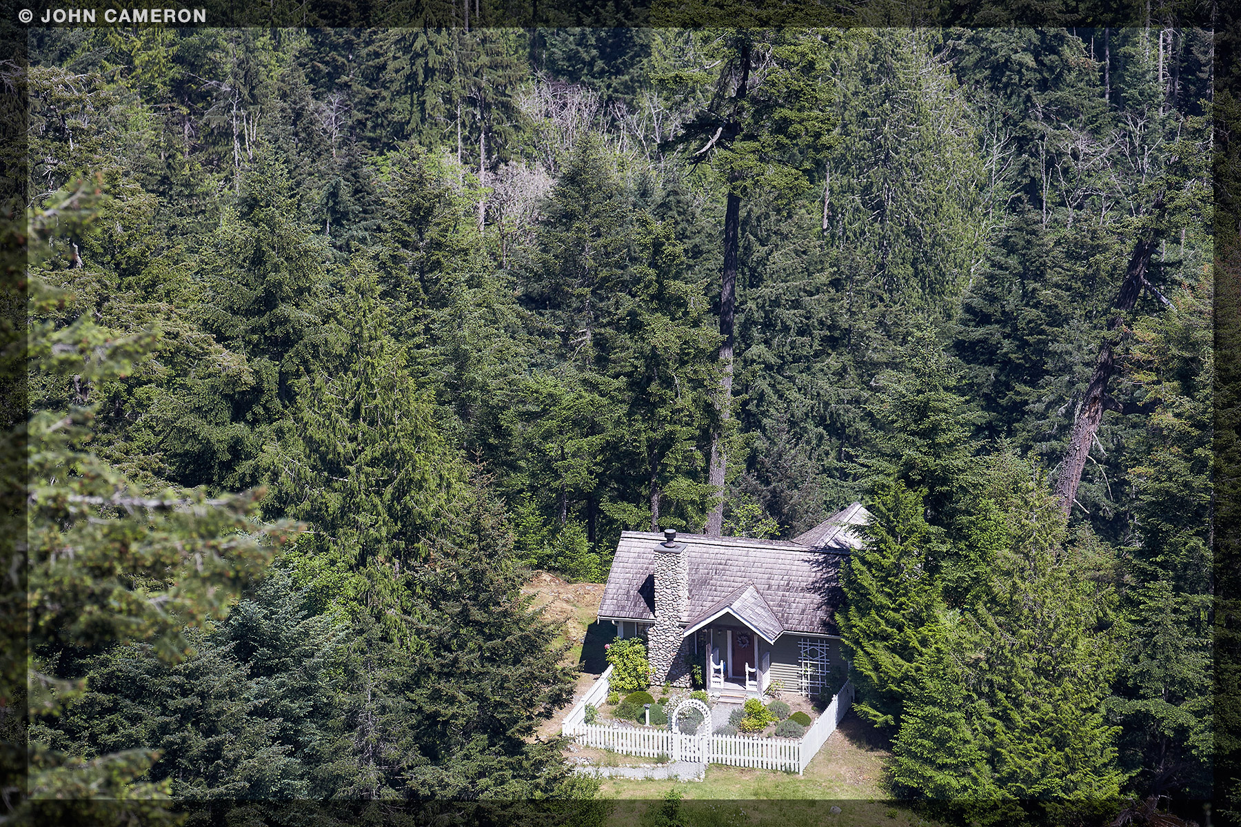House in a Salt Spring Forest