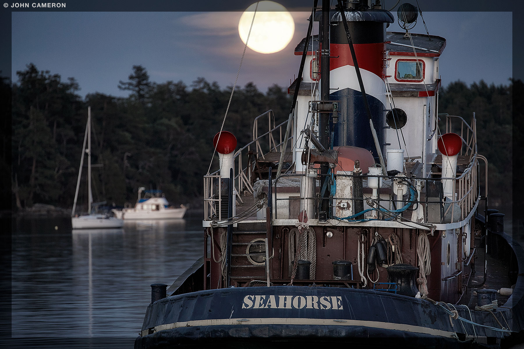 Seahorse with  August Full Moon