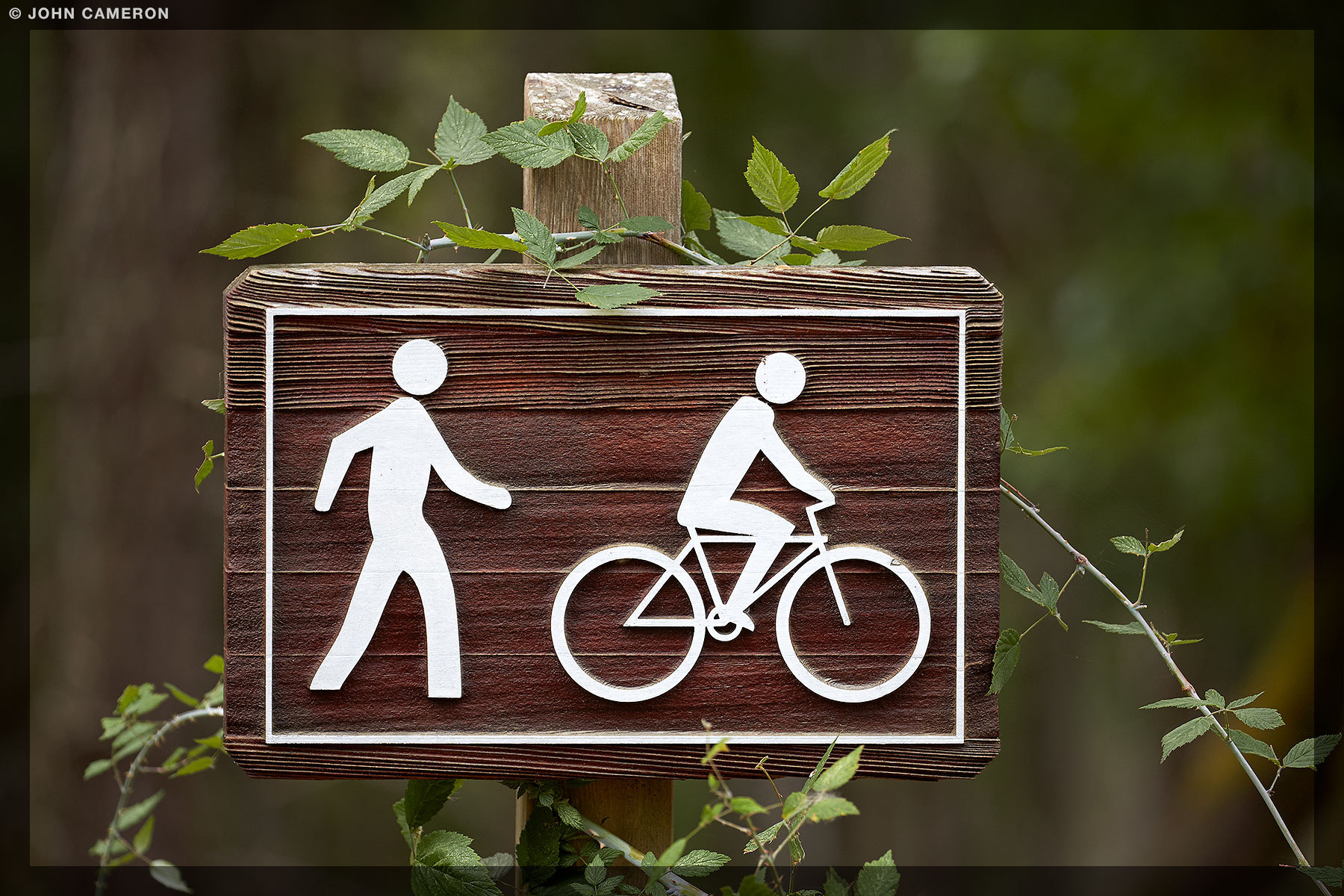 Trail Sign Decoration