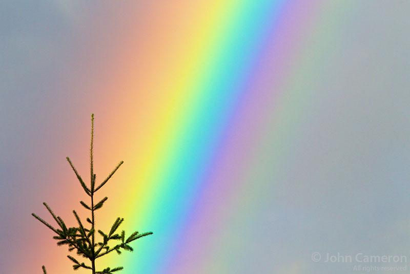 Rainbow on north Saltspring