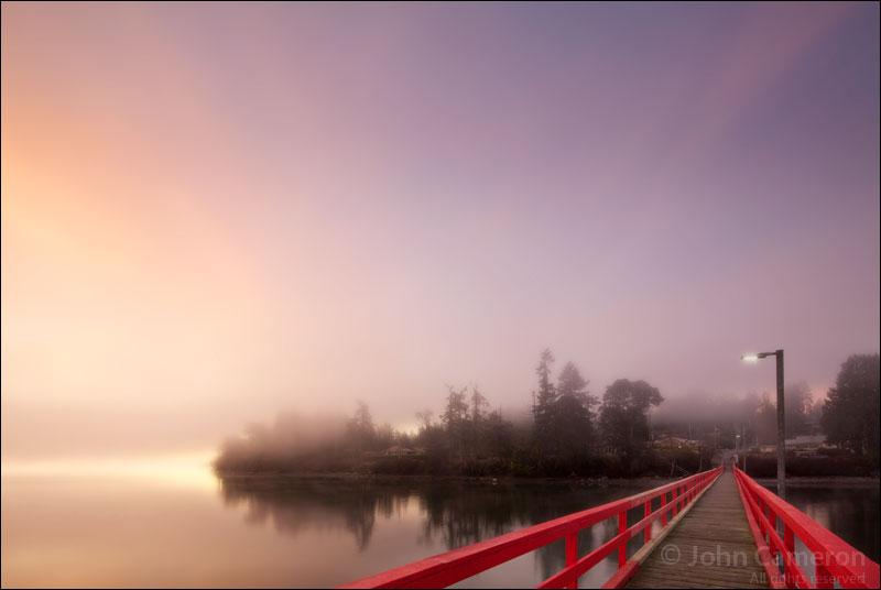 Fernwood in the Fog at Sunrise