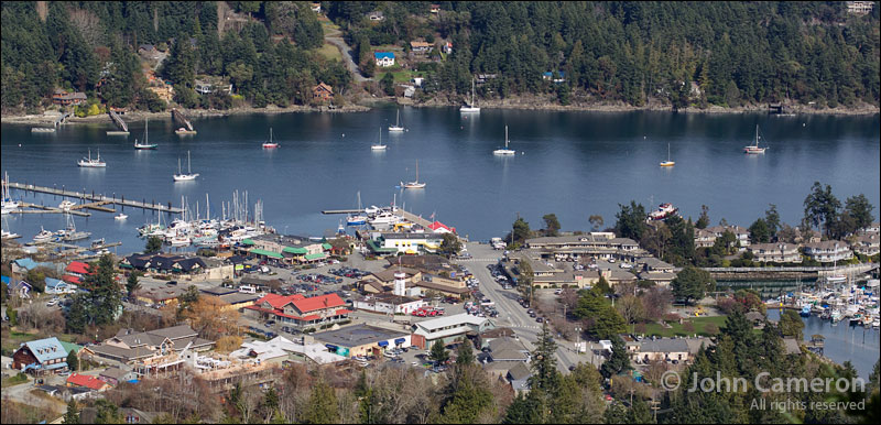 Where the Saltspring Library fits in