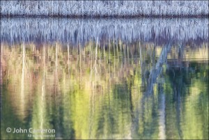 Frosty lake reflection on salt spring island
