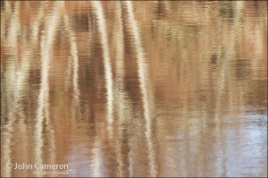 lake reflection on salt spring island