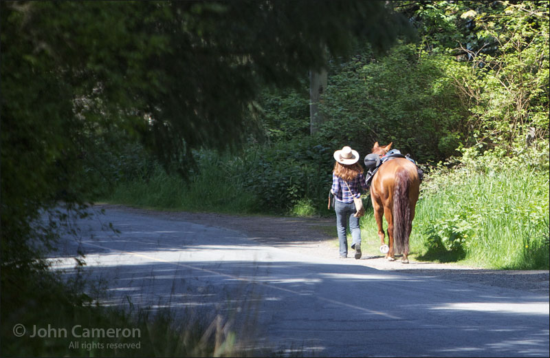 woman walking her horse to town