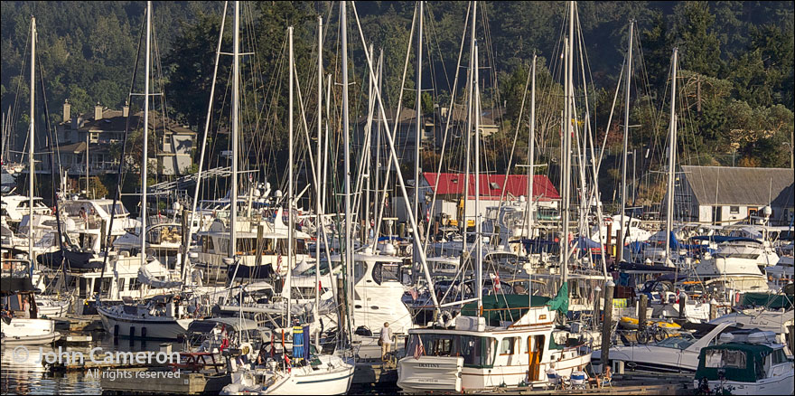 boats at marina on Salt Spring Island