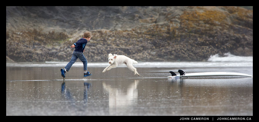 A boy plays with his dog on Chesterman Beach