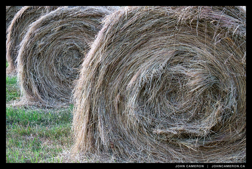 Hay on Salt Spring Farm