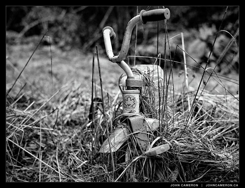 Abandoned Friend