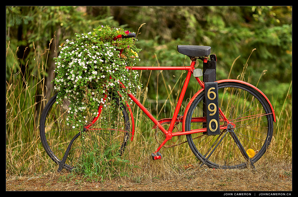 Red bike on Salt Spring Island