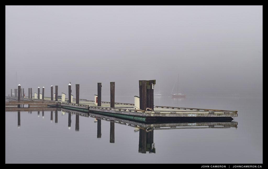 Fog at the Marina