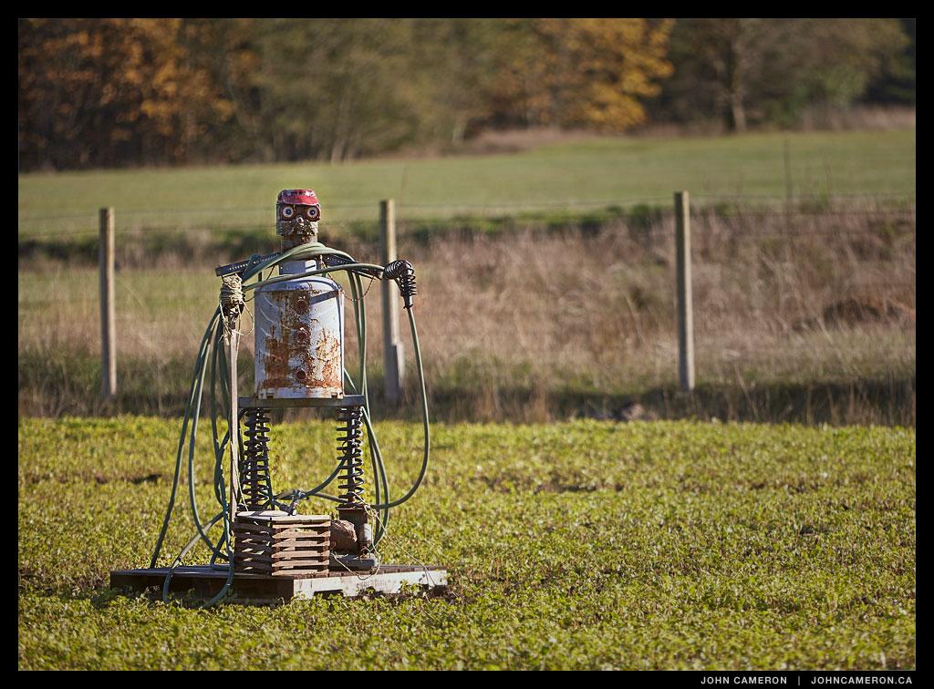 Scarecrow on a Salt Spring Farm