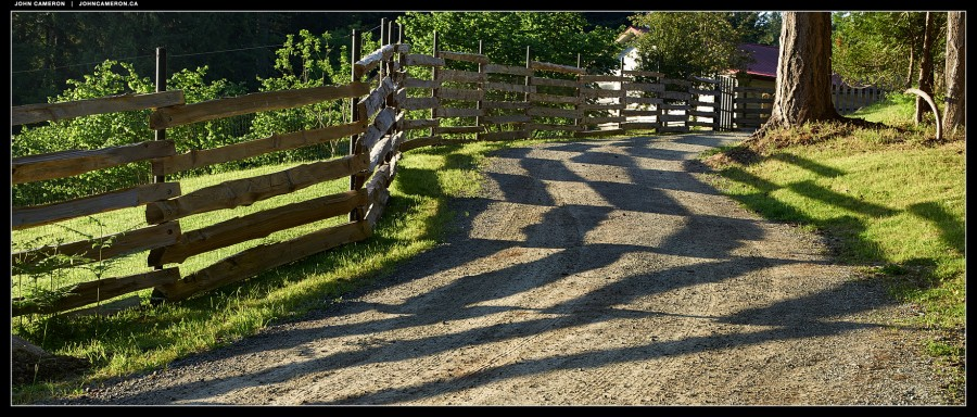 Morning Fence Pattern