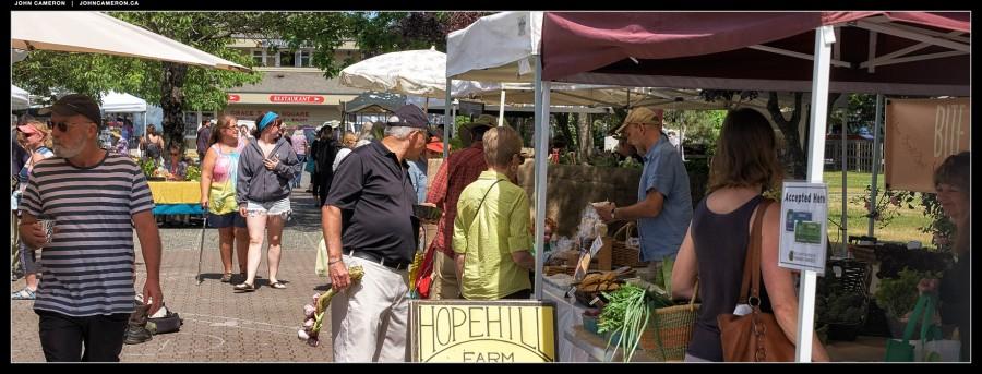 Salt Spring Tuesday Market