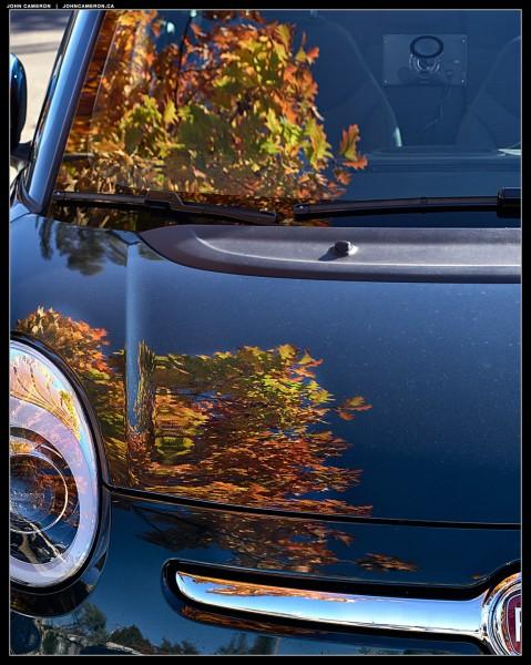 Fall Fiat