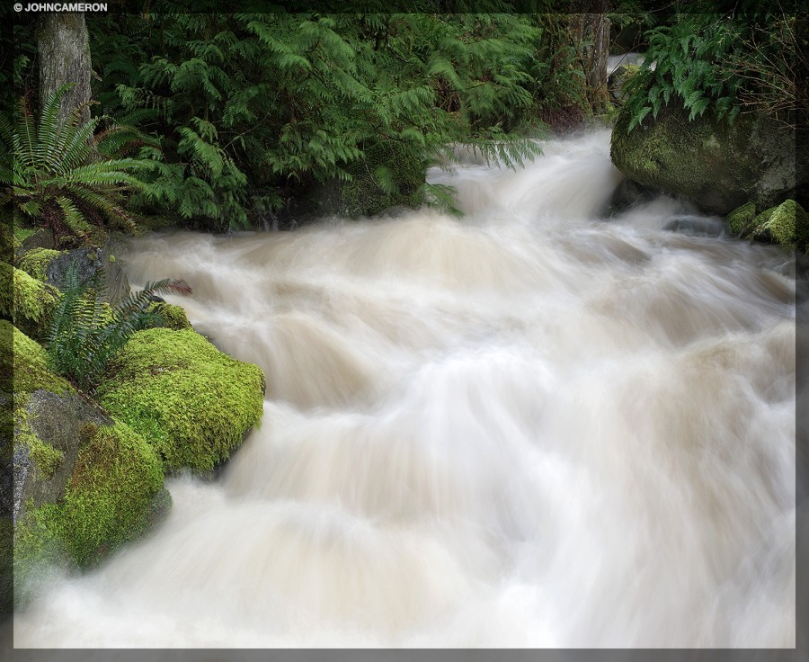 Raging Stream on Salt Spring Island
